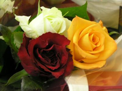 献花の為に買った花